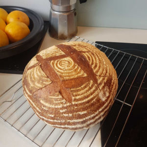 Round sourdough loaf